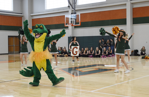 Gator mascot dances in front of cheer leaders at pep rally.
